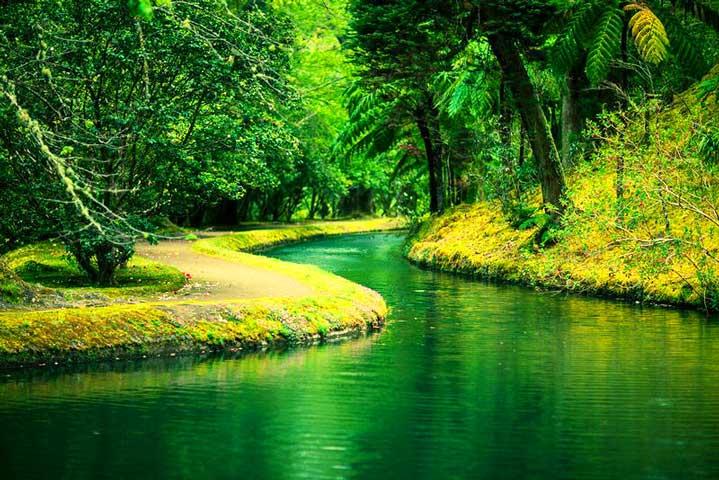 Зеленая-свежесть-Азорских-островов_