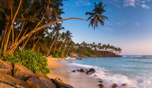 Интересные и полезные факты о Шри-Ланке