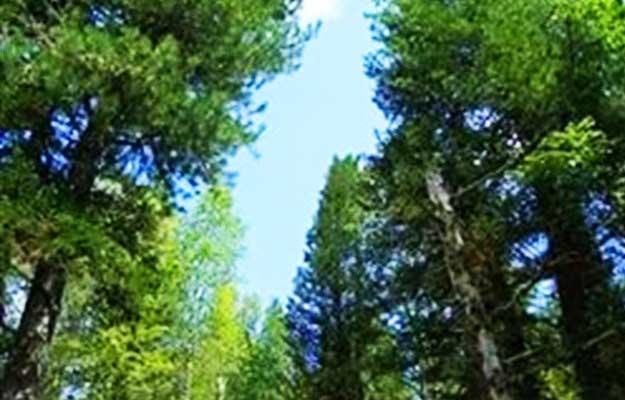 Шорский-национальный-парк