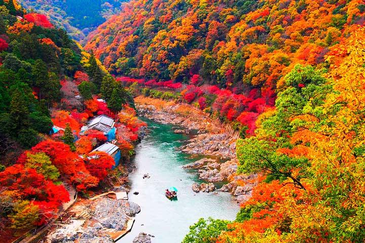 Япония_